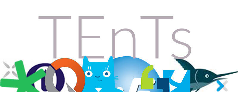 What are Translation Environment Tools (TEnTs)?